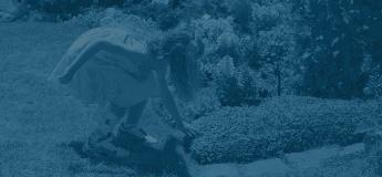 Cascade Dafo background